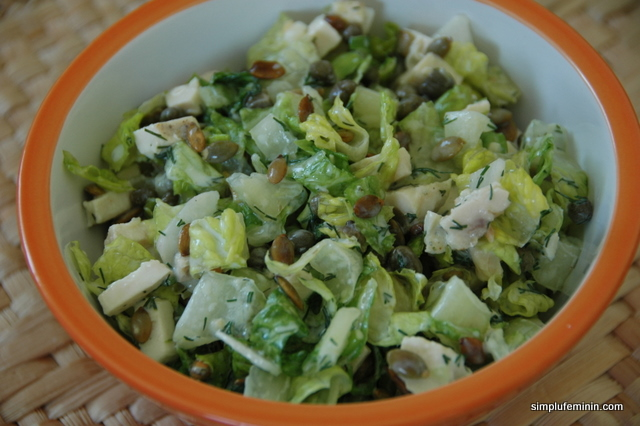 Salata de pui cu iaurt, ridichi si seminte de dovleac